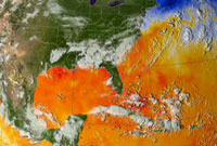 Still from animation of sea surface temperature associated with Hurricane Katrina.